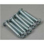 "Button Head Sheet Metal Screws 6x3/4"" (8)"