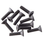 Flat Head Screw 2x8mm (10)