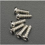 2 X 6Mm Rndhd Self-Tapping Screw (6)