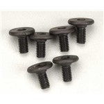 Screws 3X6mm Flat-Head Hex (6)
