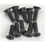 Flat Head Screw M3x10mm (10)