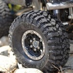 1.9 Rock Beast Scale Crawler W/Komp Kompound